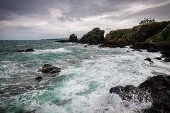 Summer in St Abbs (vlapoulle) Tags: stabbs fishing harbour pêche port ecosse scotland storm tempête vagues waves seaspray écume embruns mer sea rocks rochers coast côte nuages clouds waterofscotland