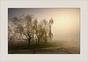 My shooting under extreme conditions (piontrhouseselski) Tags: cz south moravia valec fog morning sunrise road cross tree