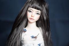 IMG_6684 (muzychenkokate) Tags: zaoll bjd doll
