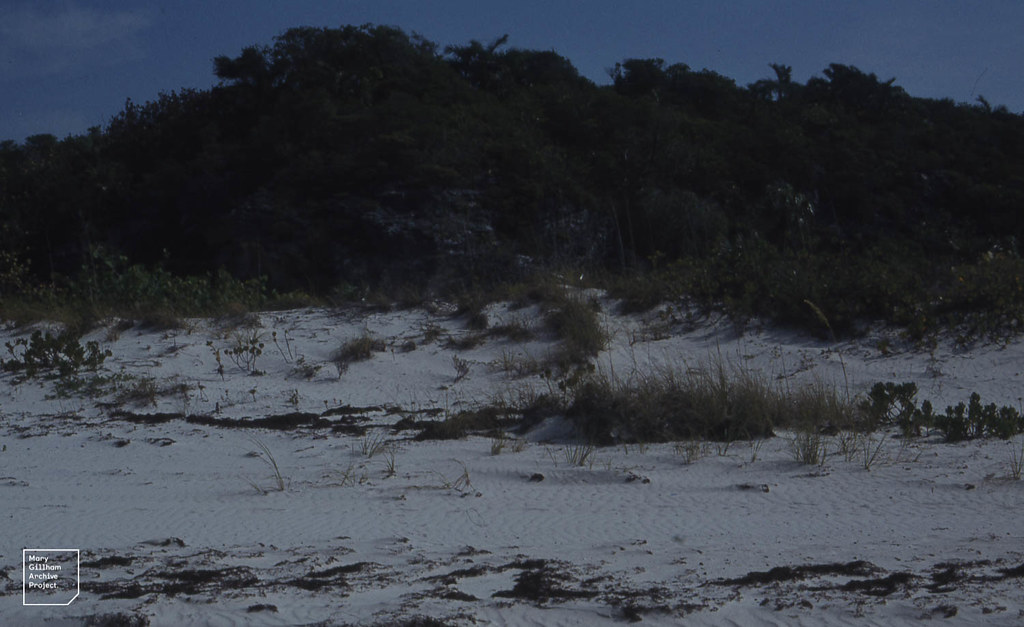 West bay beach dorset reviews