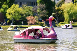 Swan-shaped pedalo at Ueno Park