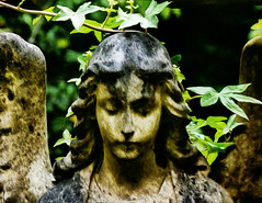 The Guardian Angel (Steve Taylor (Photography)) Tags: angel wings art memorial sculpture black brown green calm stone lady woman uk gb england greatbritain unitedkingdom london cemetery creeper cemetry grave graveyard headstone highgate highgatecemetry