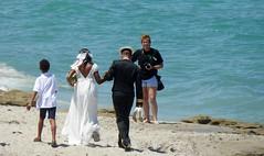 20170702 (007) Wedding Ceremony Carlin Park Jupiter Palm Beach County FL USA (FRABJOUS DAZE - PHOTO BLOG) Tags: carlinpark jupiter palmbeachcounty pbc fl fla florida usa yhdysvallat wedding ceremony reception afterparty marriage justmarried häät naimisiin hääseremonia häävastaanotto vastanaineet morsian sulhanen hääpäivä naimisissa juhla juhlapäivä beach ranta hiekkaranta ulkohäät häätulkona ocean meri atlantic atlantti kukat flowers miesjavaimo aviomies aviovaimo husband wife bride groom