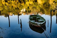 On the river (Silver_63) Tags: trezzosulladda lombardia italia it