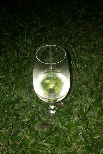 Chardonnay al pasto.