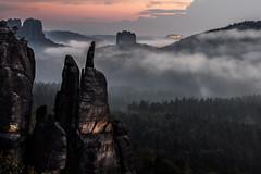 the castle (powerofadventure) Tags: elbsandsteingebirge sandstone elbe dresden häntzschelstiege labe trees forest sunset sonnenuntergang farben color mood baum wälder wald gebirge nebel fog landschaft felsen berg himmel