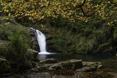 Suena a otoño (lesxanes) Tags: cascada waterfall river río otoño autumn asturies asturias forest bosque sundaylights