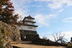 石垣のある道 (* Yumi *) Tags: 彦根城 滋賀 hikonecastle japan slope road 石垣