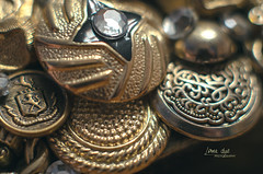 Button Treasure (L E Dye) Tags: december42017 macromonday themebuttonsandbows 2017 alberta canada d5100 gold ledye nikon buttons 20mmextensiontube