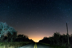 Star Road (KevinHillPhotography) Tags: galaxy stars green nikon starrynight astrophotography sonya6000 texas country ybs2017 yourbestshots2017 nature earth bright shiny lightpaint light branches black december roads road cold november