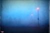 The Fog (MBates Foto) Tags: spokane washington usa available light color parking lot fog nikon outdoors daylight morning urban