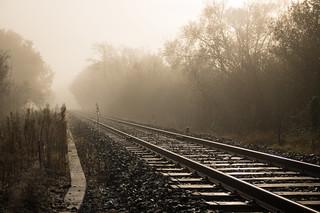 Lumineux brouillard