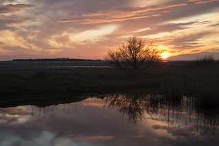 Hilbre Island Sunset Silhouette Reflection