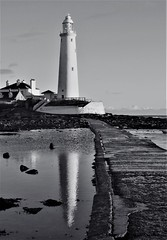 St. Mary's Lighthouse - Black and White Reflections (Gilli8888) Tags: northeast whitleybay tyneandwear stmarysisland stmaryslighthouse lighthouse seaside northsea shore shoreline nikon coolpix p900 blackandwhite reflections sea water rocks rockpool seascape causeway