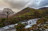 Moody Kirk Fell (sarahOphoto) Tags: 6d autumn canon cumbria district kingdom lake national november park united wasdale wast water western kirk fell moody lone tree cascade waterfall river sky clouds landscape trust