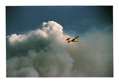 048_17 by jimbonzo079 - Kalamos fire - Oropos  Attiki Greece - 14/8/2017  Canon AE-1 & PANAGOR MC f4.5 75-200mm Lens (handheld) Agfa HDC 100 (expired 1999) Konica Minolta Dimage Scan Dual IV