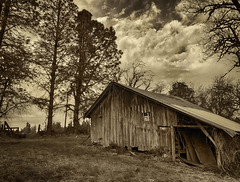 Rural Dreams (Ian Sane) Tags: ian sane images ruraldreams donald oregon barn shed old vintage antique rural country farm land sepia decay apple iphone 8 plus back dual camera cell phone imaging phoneography iphoneography