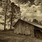 Rural Dreams thumbnail