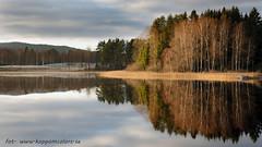 20171103003114 (koppomcolors) Tags: koppomcolors sweden sverige scandinavia värmland varmland