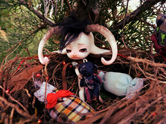Yeti (FollowingDinosaurs) Tags: bjd goat dollzone heavy rain animal tiny
