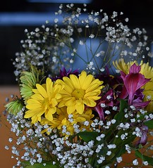 A Delight (swong95765) Tags: flowers bouquet pretty delightful gift symbolic