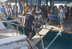 quadruple amputee man takes diving course 05 (KnyazevDA) Tags: disability disabled diver diving deptherapy undersea padi underwater owd redsea buddy handicapped aowd egypt sea wheelchair travel amputee paraplegia paraplegic
