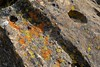 Rocks with interesting shapes and holes. (openspacer) Tags: montereycounty