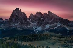 Sassolungo (Andrew G Robertson) Tags: seiser alm alpe di siusi sunrise dawn dolomites dolomiti italy italia val gardena bolzano trentino langkofel sassolungo saslonch south tyrol sunset