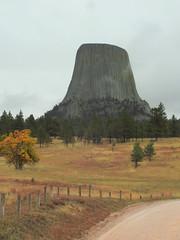 Wyoming, Devils Tower DSCN1417 (ianw1951) Tags: cenozoic columnarjointing devilstower geology phonolite usa wyoming