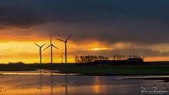 Sunrise on a rainy morning (BraCom (Bram)) Tags: 169 bracom bramvanbroekhoven goereeoverflakkee paardengat bids boerderij bomen bui cloud farm morning naturearea natuurgebied ochtend reflection shower silhouet silhouette spiegeling sun sunrise tree vogels water widescreen windturbine windmill windmolens wolk zon zonsopkomst