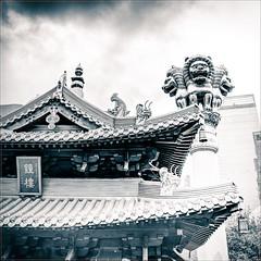Four Lions (mr.letof) Tags: lion column blackandwhite noiretblanc noir blanc black white roof toiture temple paix tranquillité sérénité shanghai chine bouddhiste bouddhisme spiritualité monk peace tranquility serenity china buddhist buddhism spirituality mrletof d700 nikon nikond700 lightroom