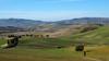 Landscape near Pienza (Darea62) Tags: valdorcia pienza landscape nature hills tuscany paesaggio toscana unesco cypress trees stradabianca panorama siena countryside country fields