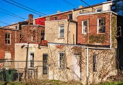 2017.11.26 Carter G. Woodson National Historic Site, Washington, DC USA 0884