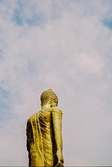 Skies Above 2.0 | Nikon FE2 | Nikkor 50mm (f1.8) (IG @ Meandergraph) Tags: thailand krabi bangkok chiangmai phuket kohsamui travel asia southeastasia streetphotography film analog 35mm filmphotography nikon nikonfe2 nikkor50mm 50mm