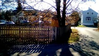 Autumn morning ! HFF 365/25