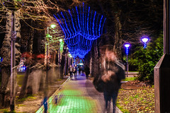 Ghosts of Christmas past (Paul Wrights Reserved) Tags: walthamstow london england longexposure christmas lights christmaslights christmastime vanishingpoint movement motion walking ghostly nightphotography night nighttime ghost
