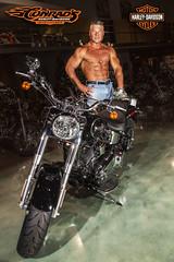 IM5D1170 (Rick Drew - 19 million views!) Tags: pose posing posed harley bodybuilder muscle davidson bike hog chrome black jeans green rip ripped healthy fit