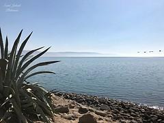 13 - Kafarnaum - Galileai - tenger / Kafarnaum - Genezaretské jazero