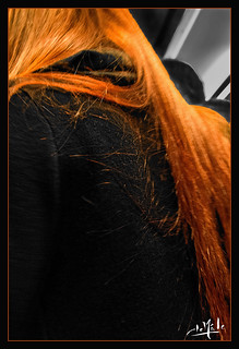 Chevelure rousse / Ginger hair - Métro/metro - Paris