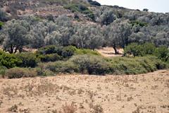 DSC_0167 (Gveronis) Tags: greece greekisland ancientgreece sun sea gveronis gveronisphotography hellas ellada nature