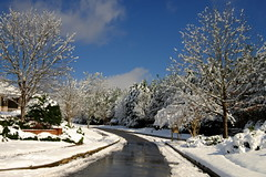 The Way In (ChristianRock) Tags: pentax ks1 smc da 1645mm 1645 f4 al winter woodstock ga georgia nature beauty snowfall snow
