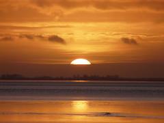 sunset at Dollart Bay (achatphoenix) Tags: rheiderland ostfriesland roadtrip rural december dezember sunset sun eastfrisia dollart dollard dollartbay gegenlicht sky clouds nuages ciel cielo wolken sonnenuntergang ems riverems