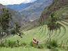 The Sound of Music ...in the Pisac Andenes (terraces). (Lewitus) Tags: pisac terraces landscape quena 2006