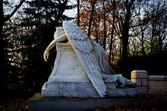 Fallen Angel (Greg @ Montreal) Tags: graveyard cimetière montreal montréal tombe automne statue grave light angel ange nikon nikonpassion d600 québec quebec canada fullframe angelofgrief