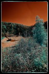 Volcà de Santa Margarida (Ar@lee) Tags: catalunya lagarrotxa volcàdesantamargarida red green airelibre árbol bordeparafotos colours d50 espectrecomplet exteriors fullspectrum filtre630nm photographyinfrared paisaje bosque ir fotografíainfrarojos nikond50 sky landscape naturaleza rojo trees volcano wood volcán