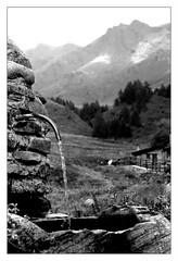 """ Tonale  "" (Davide Zappettini) Tags: davidezappettiniphotography filmphotography bw bianconero pontedilegno mountain ilford blackandwhite"