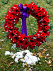 Wreath and Snow (jeffyphotos) Tags: guelph remembranceday poppies wreaths woodlawncemetery
