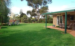 221 Dandaloo St, Narromine NSW