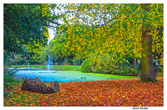 Croxteth Park (coulportste) Tags: croxteth park liverpool autumn leaves colour fountain