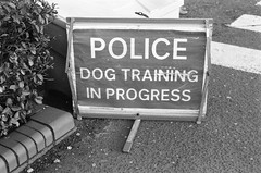 Unusual Sign (Man with Red Eyes) Tags: sign preston lancashire northwest nikonf6 50mmf18ai analog analogue blackwhite monochrome silverhalide berggerpancro400 d76h divided modified anchelltroop 5minsa5minsb v850